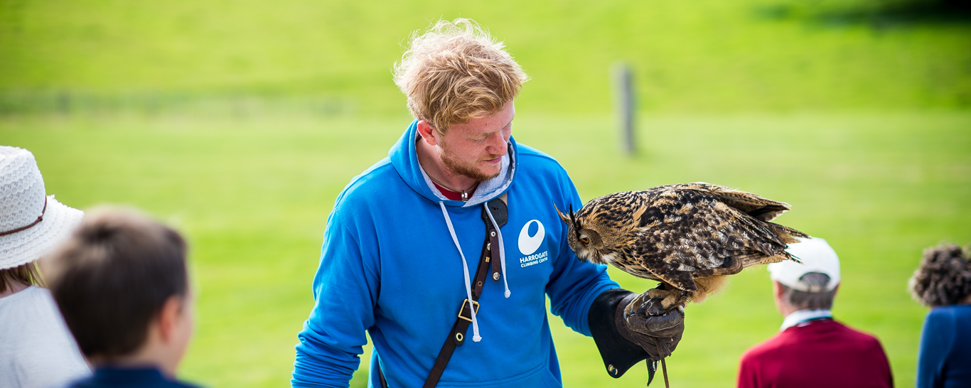 National Centre for Birds of Prey